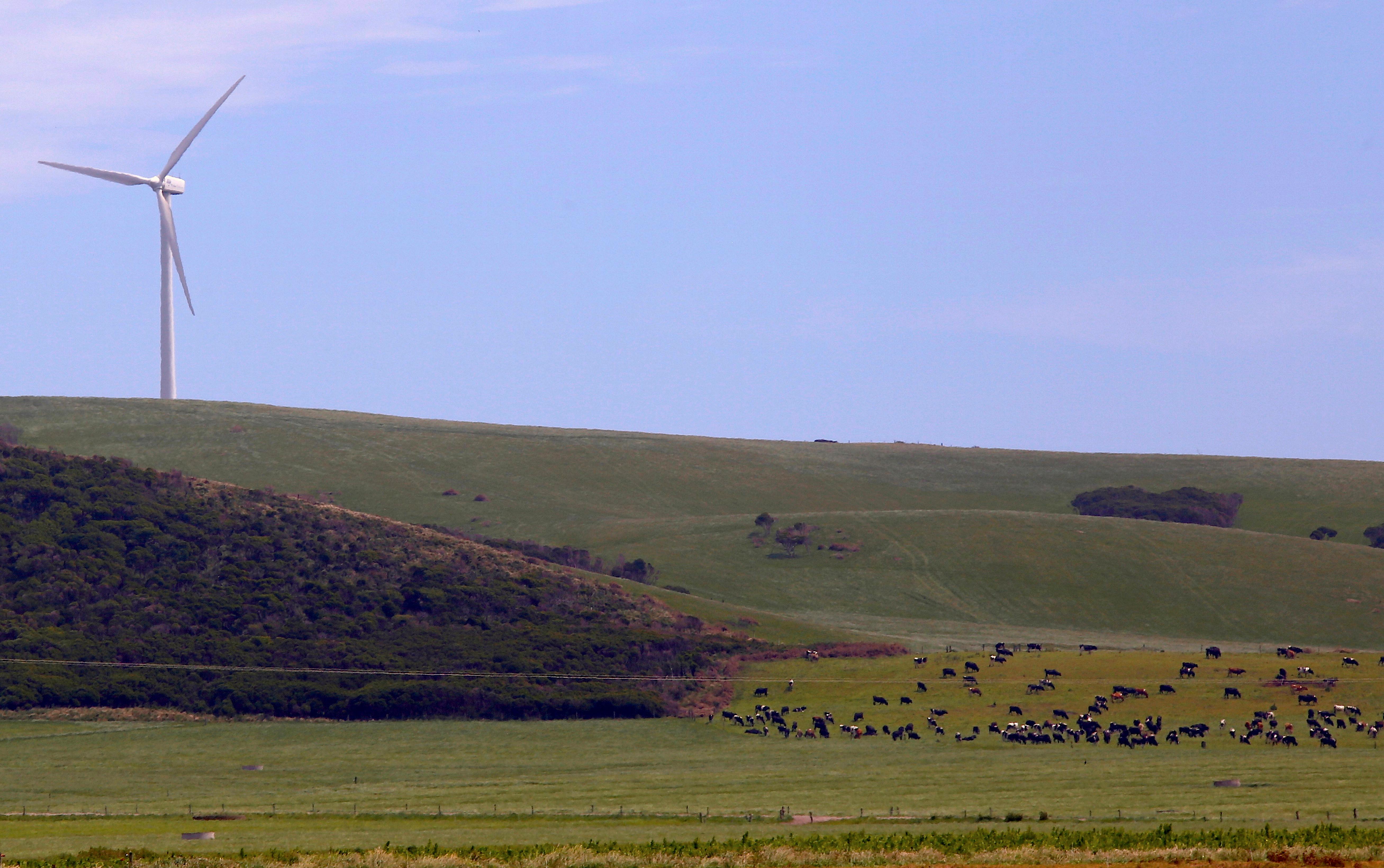 Renewable energy wind power Tasmania Australia