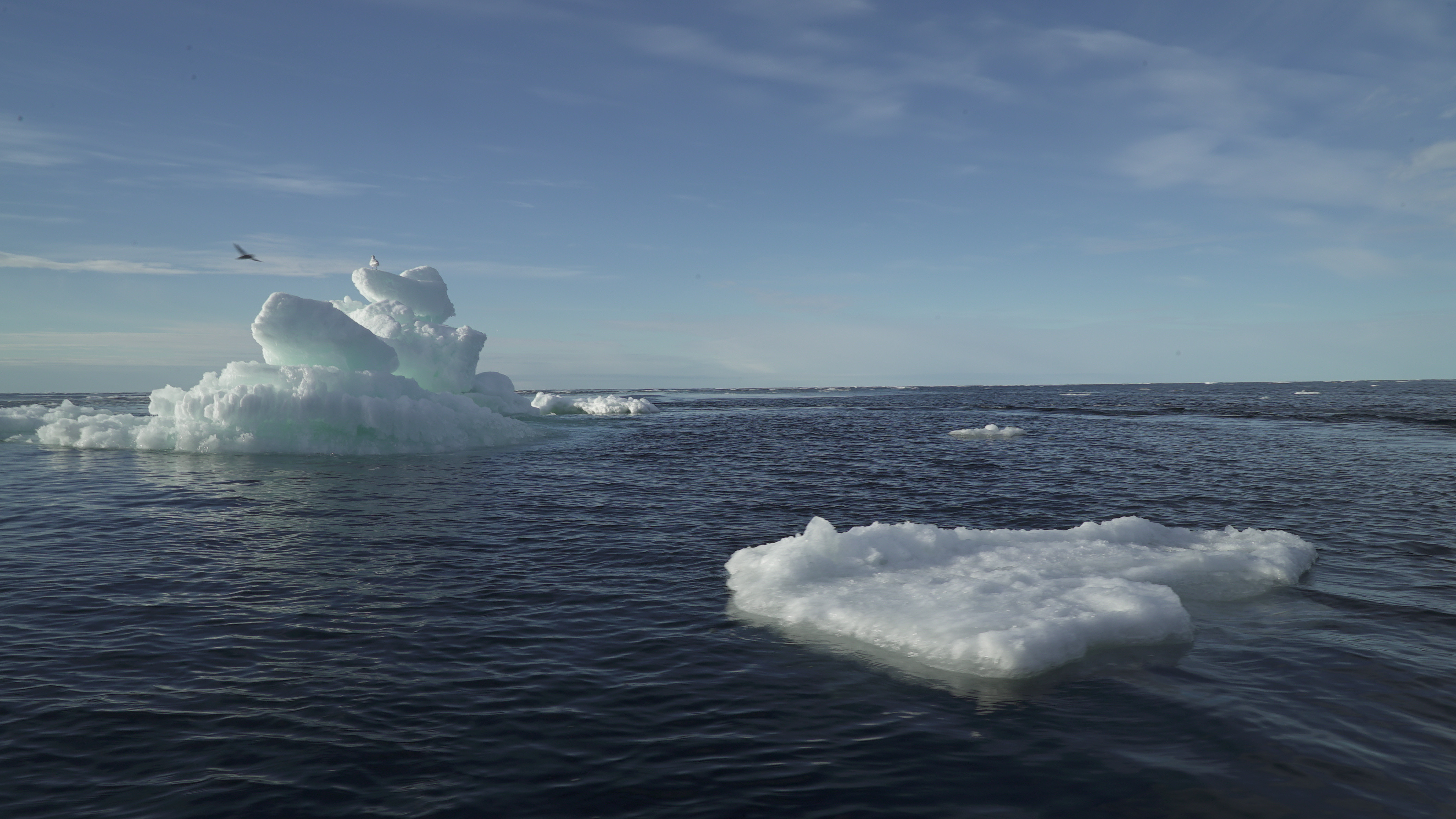 Arctic Ocean Multi-year sea ice global arming climate change Greenland