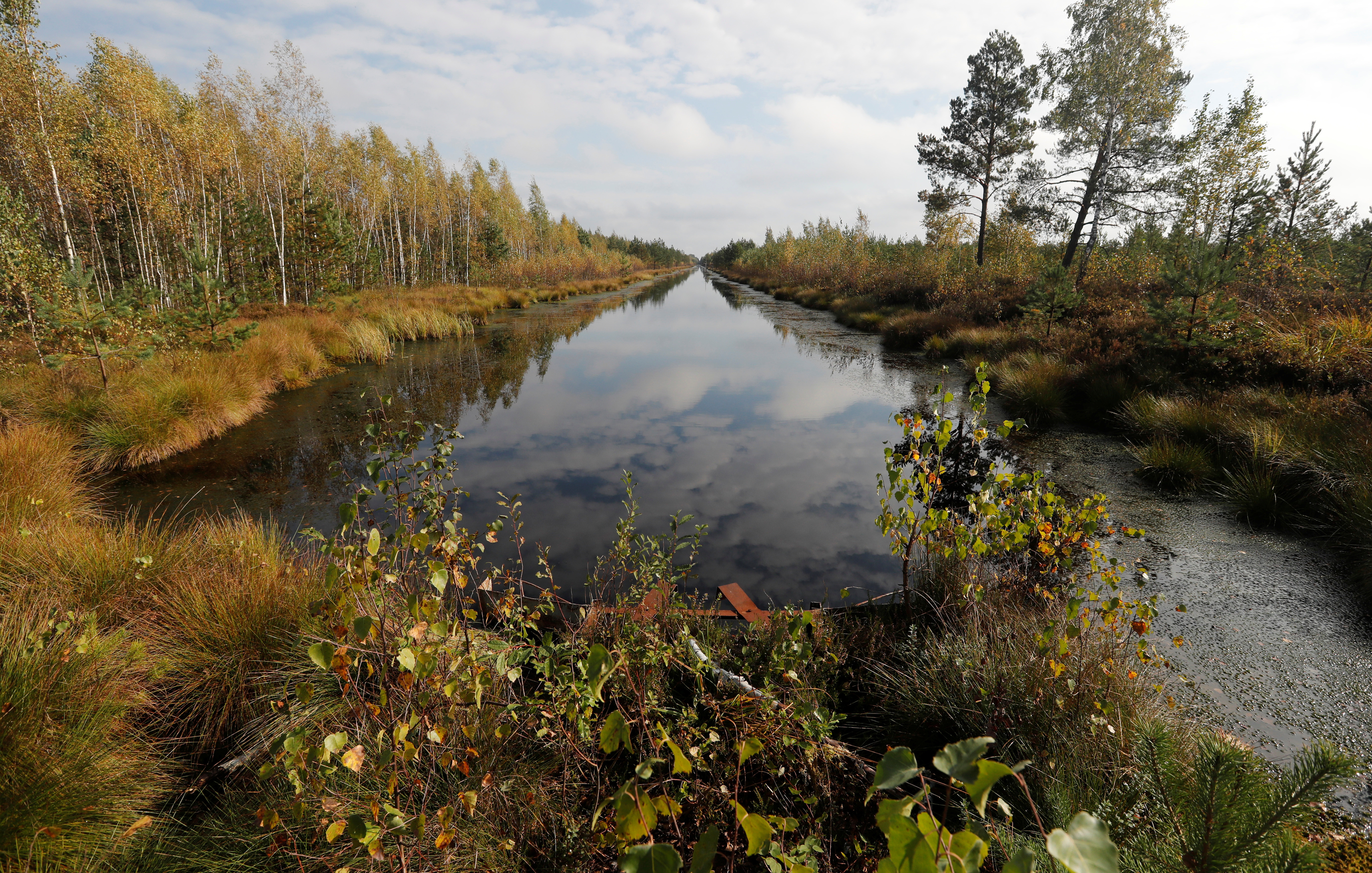 """A channel, blocked with a dam, is seen at a marsh called Galoye, near the town of Cherven, Belarus October 2, 2018. The new GEF (Global Environment Facility) funded and UNDP (United Nations Development Programme) implemented """"Wetlands"""" project, which will help to restore 12,456 ha of the degraded peatland forests, and decisions on restoration/wise management of 260,000 ha of Belarusian peatland forests will be made, according to UNDP in Belarus.  REUTERS/Vasily Fedosenko - RC19D1B8C4D0"""