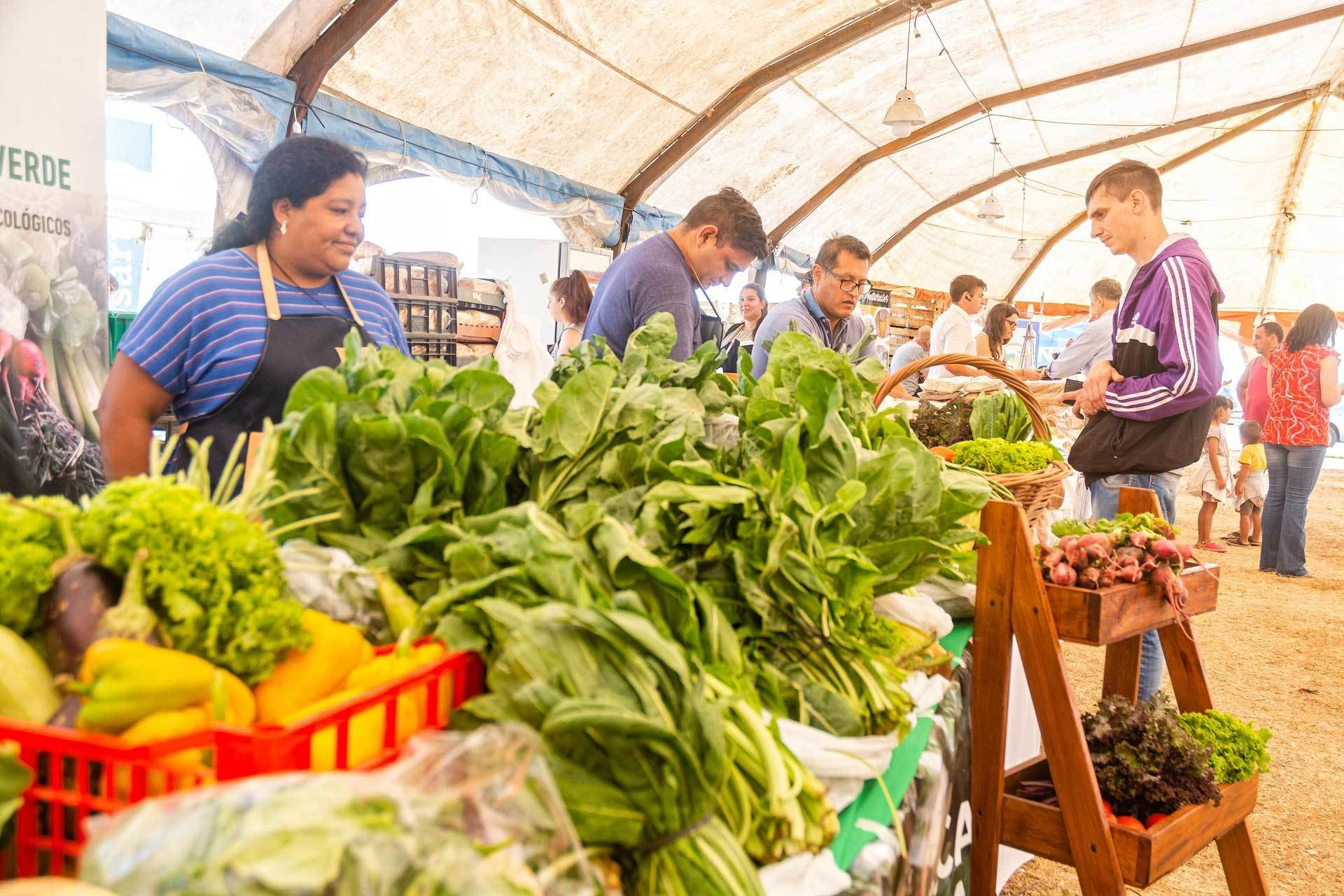 Rosario's flagship urban and peri-urban agriculture program has evolved to become a cornerstone of the city's response to increased flooding and heat events.