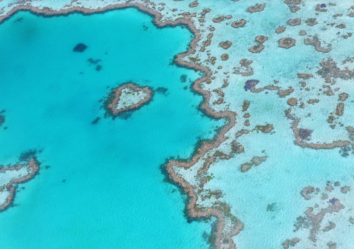 A picture of the Great Barrier Reef
