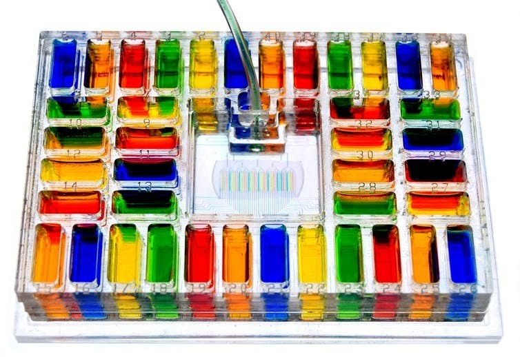image of microfluidic equipment used in the field of tumor removal