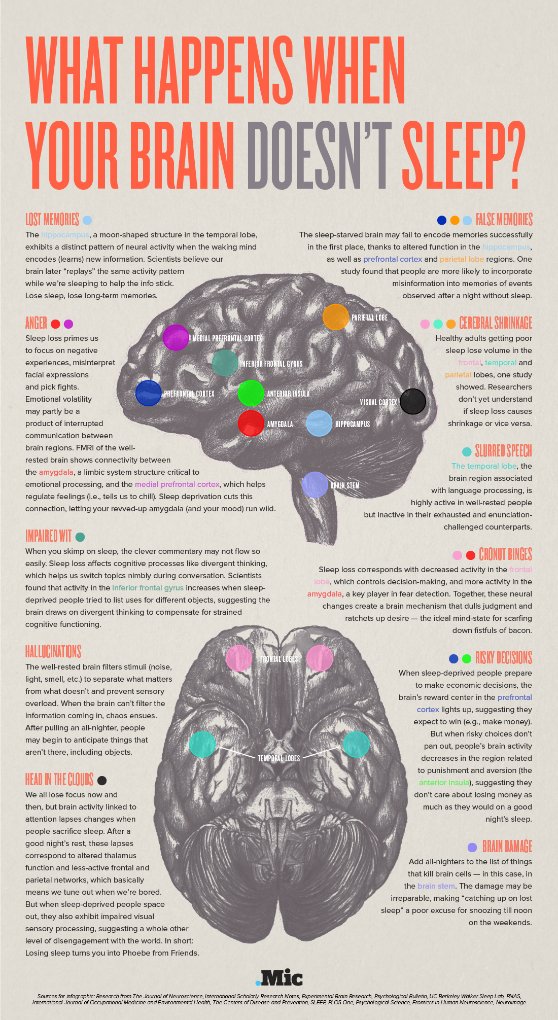 The effects of a lack of sleep on your brain.