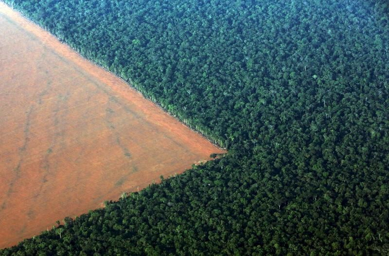 The Amazon rain forest (R), bordered by deforested land prepared for the planting of soybeans, is pictured in this aerial photo taken over Mato Grosso state in western Brazil, October 4, 2015. Brazil will produce a record 97.8 million tonnes of soybeans in 2015/16, a 3.2 percent rise compared to 2014/15, but much of this additional volume will be stored in the country, with little impact on export volumes, estimated on Monday the Brazilian Association of Vegetable Oil Industries (ABIOVE). Picture taken October 4, 2015. REUTERS/Paulo Whitaker TPX IMAGES OF THE DAY - GF10000233479