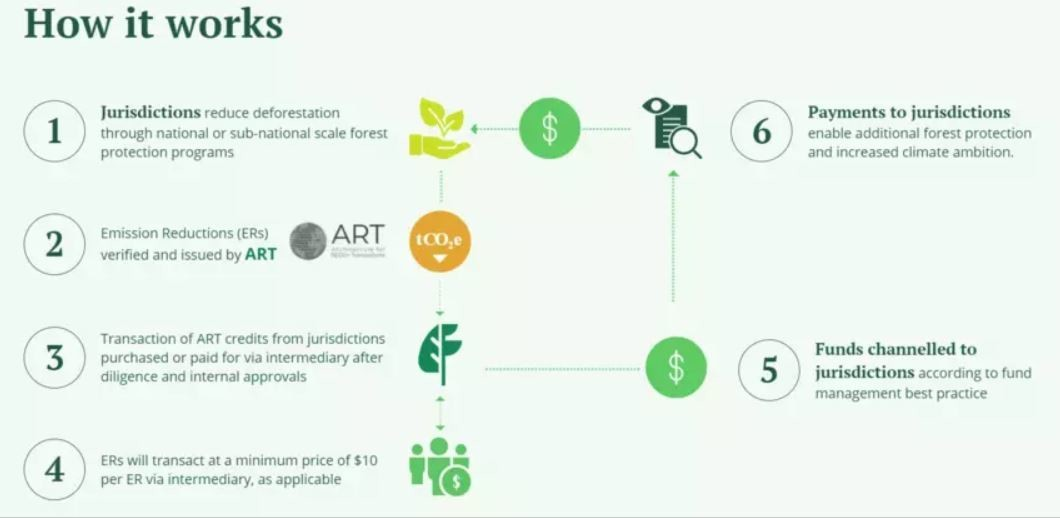 The Lowering Emissions by Accelerating Forest finance (LEAF) Coalition is working with a number of governments and large companies.