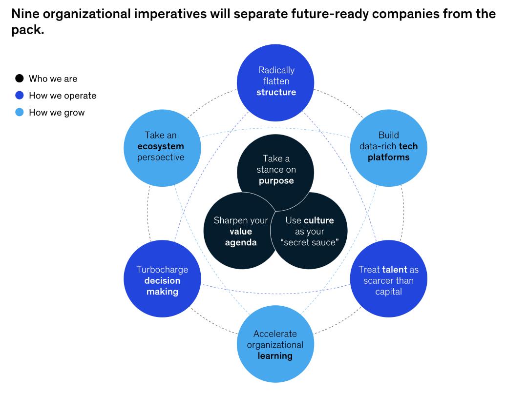 미래에 대비 한 기업을 팩에서 분리 할 9 가지 조직적 명령을 보여주는 다이어그램