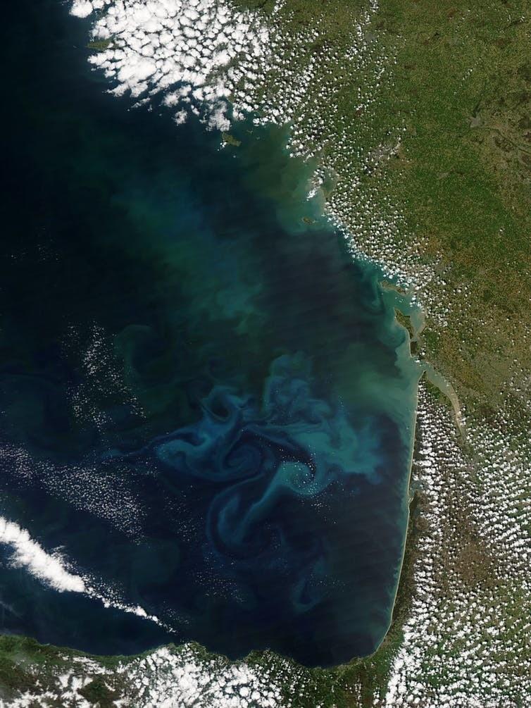 Ces circonvolutions de vert, de turquoise et de cyan renseignent sur la nature du phytoplancton au large des côtes landaises (le 4 mai 2013, satellite Terra – capteur MODIS).