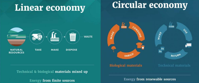 The circular economy and the linear economy