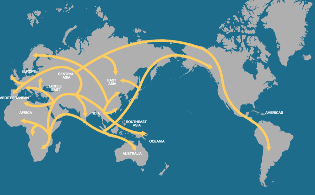 Human migration patterns over time, beginning in east Africa.