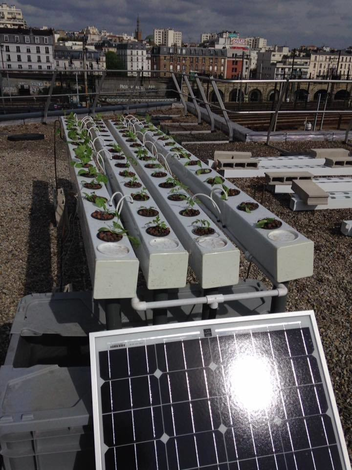 weforum.org - Plans for urban farming in Paris have gone through the roof