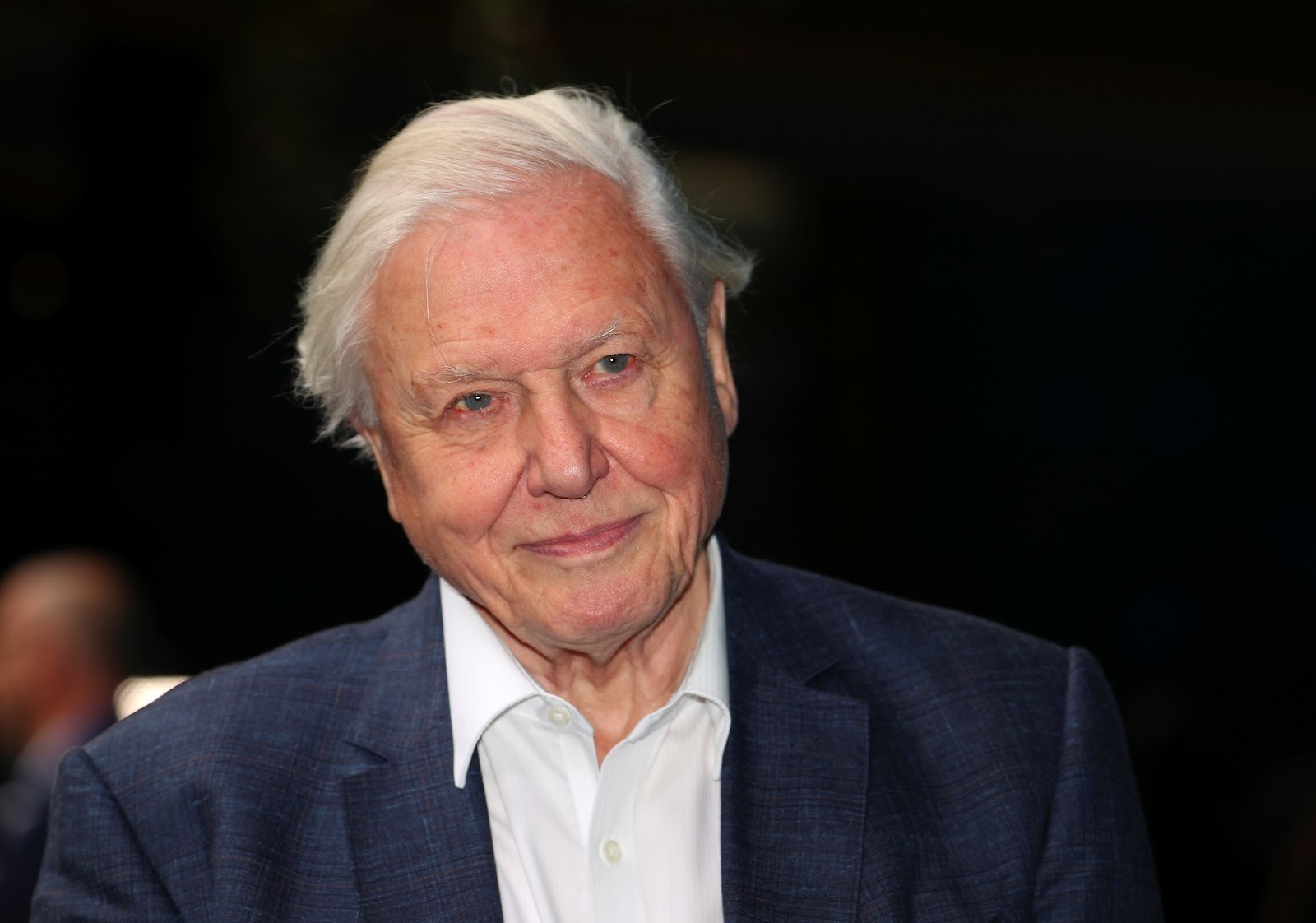 Attenborough at the premiere of Blue Planet II in London.
