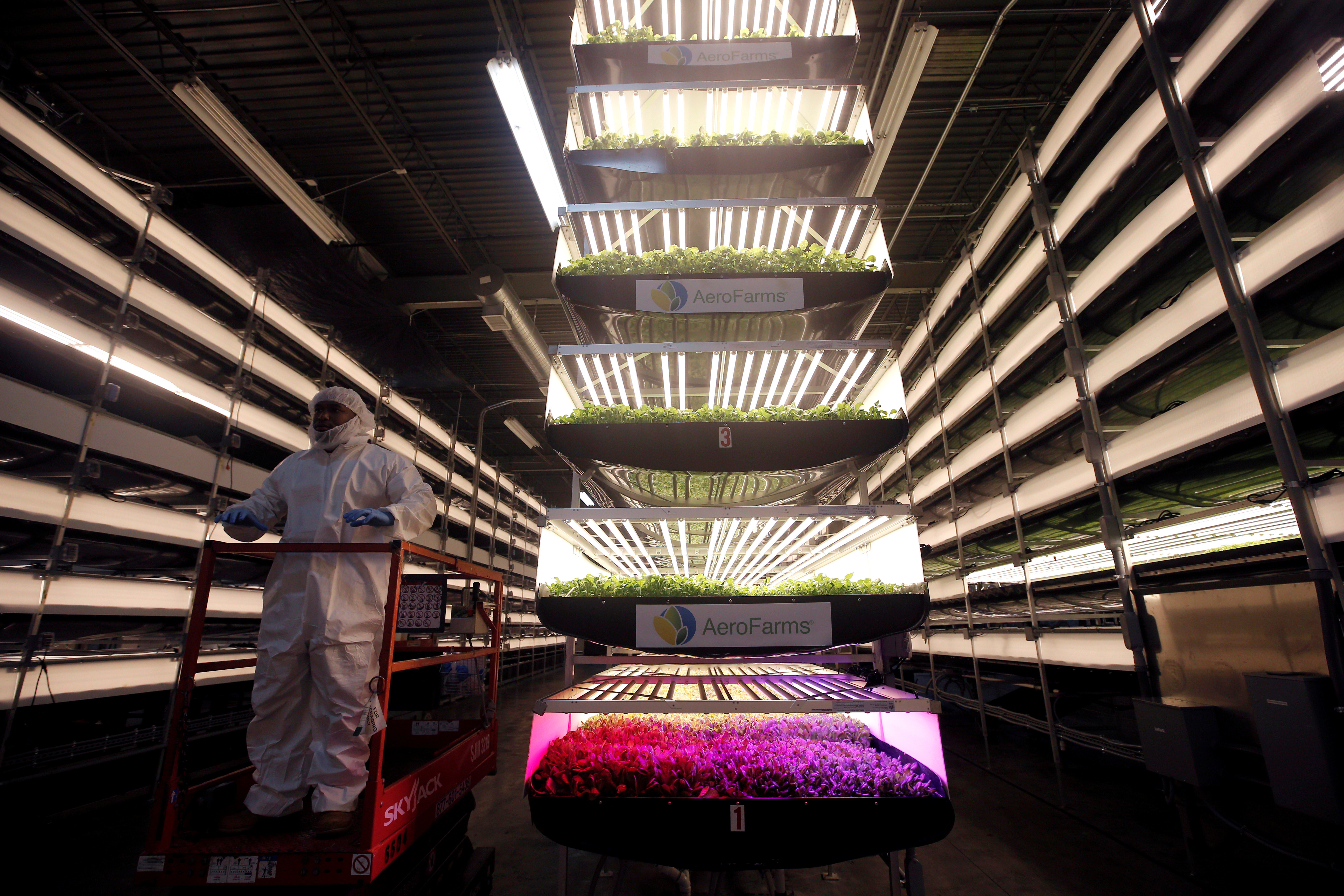 A worker rides a lift past racks of vertical farming beds lit with light emitting diode