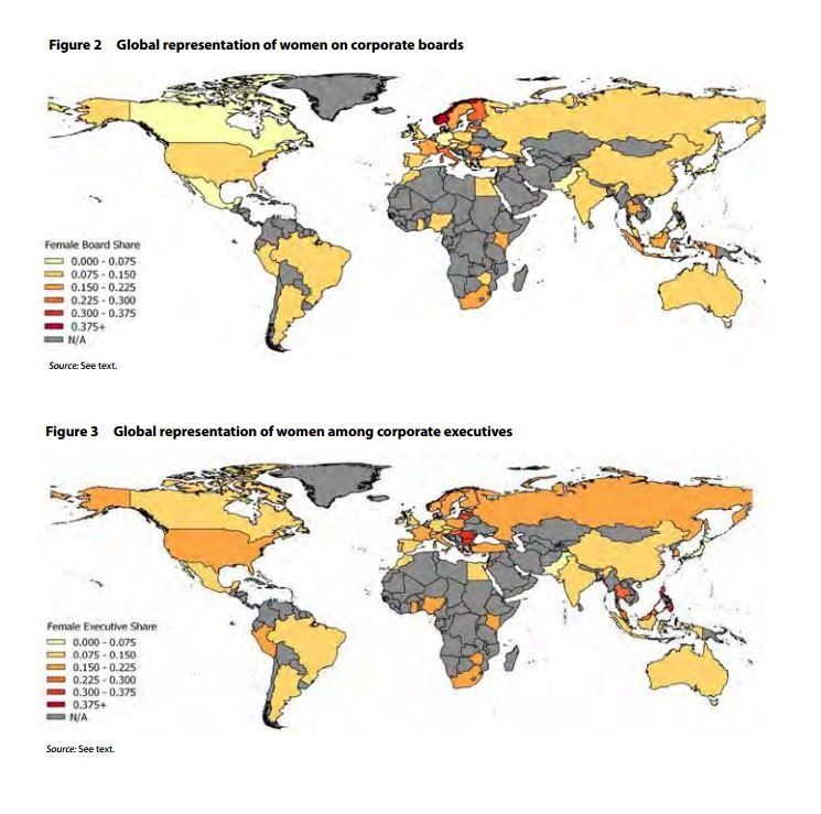 Global representation of women on corporate boards and among corporate executives.