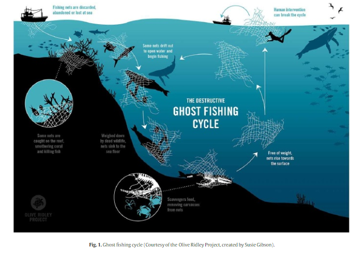 The Ghost fishing cycle