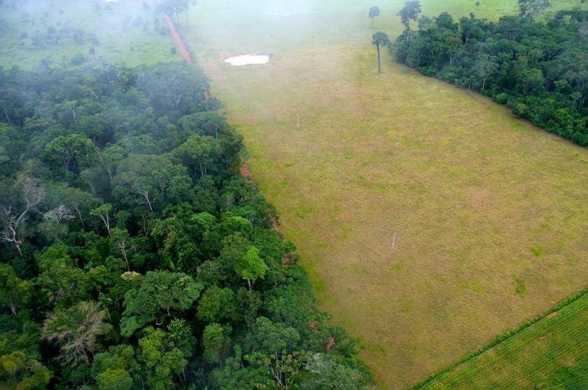 Exemple de déforestation pour les besoins de l'agriculture en Amazonie, au Brésil.