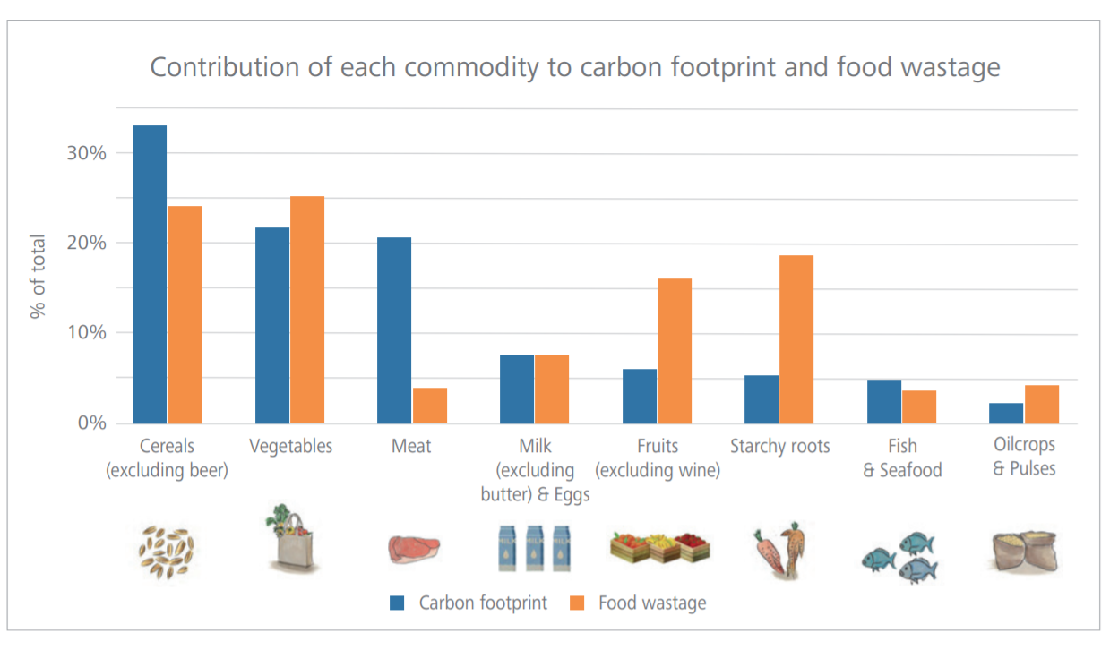 a graph showing wasted commodities and their respective carbon footprint.