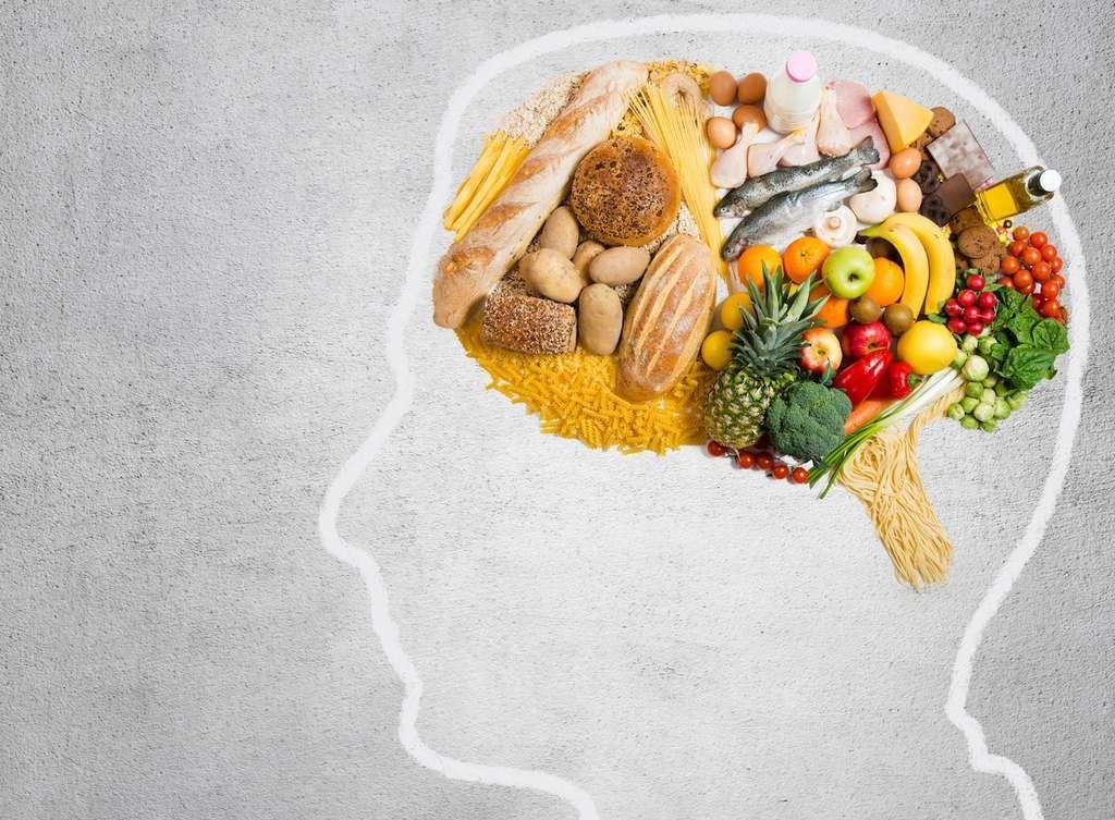 Cette étude montre qu'il existe des mécanismes cérébraux qui s'activent lorsque nous nous exposons à un certain type d'aliments.