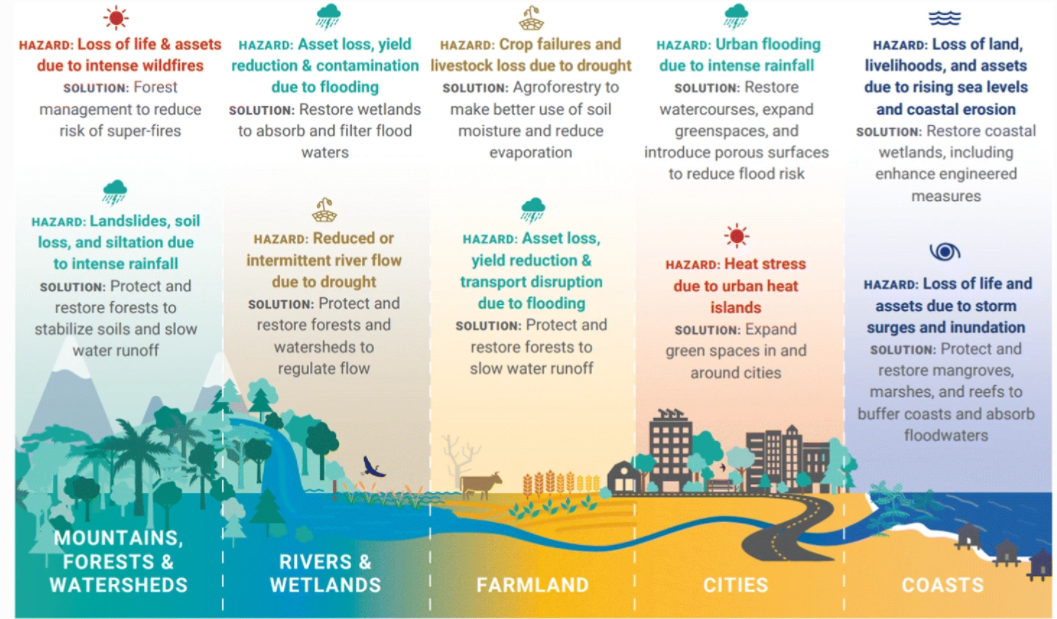 a diagram showing how the natural world can help boost climate change resilience