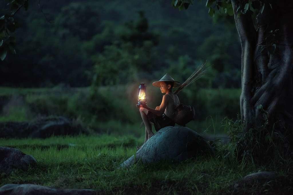14,6 millions d'hectares. C'est la superficie de forêts naturelles que le Vietnam compte restaurer. Pour l'heure, l'engagement le plus important au monde en la matière.