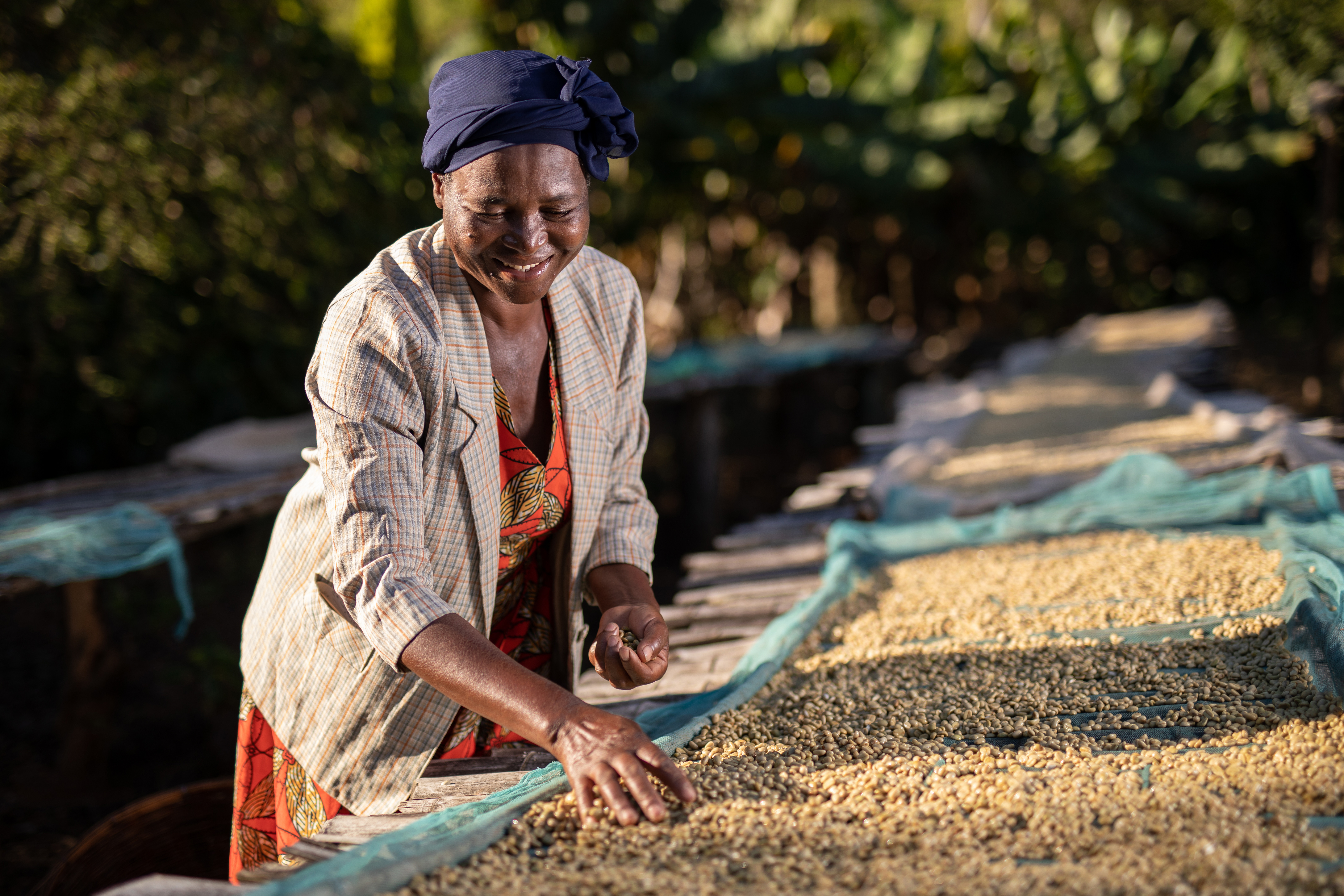 A farmer member of the AAA Academy, a fair trade program set up by Nespresso to revive coffee cultivation in Zimbabwe, is sorting coffee beans in a farm in the Honde Valley in eastern Zimbabwe, near the border with Mozambique, June 20, 2018.