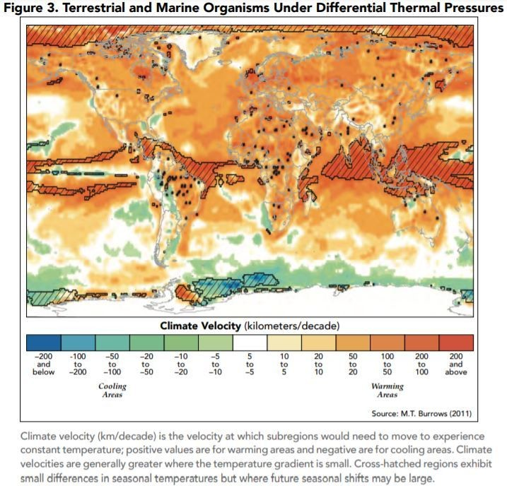 Terrestrial and marine organisms under differential thermal pressures.