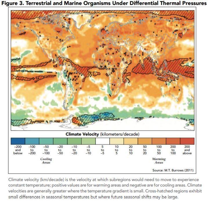 Terrestrial and marine organisms under differential thermal pressures.