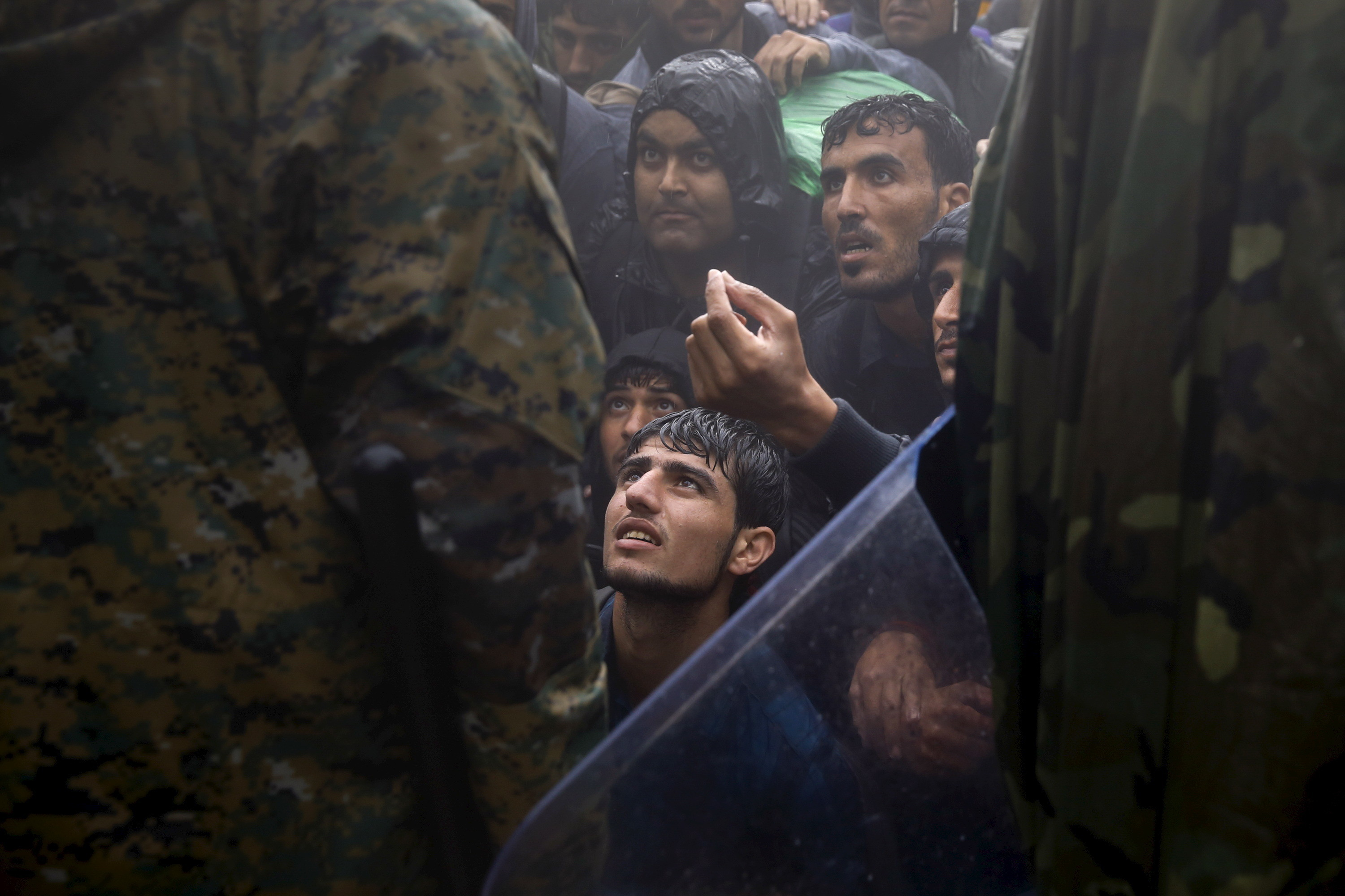 Middle Eastern refugees beg border police to allow passage into Macedonia, 2015.