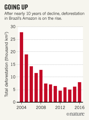 Deforestation In The Amazon Is Up Again But This Time Big Business