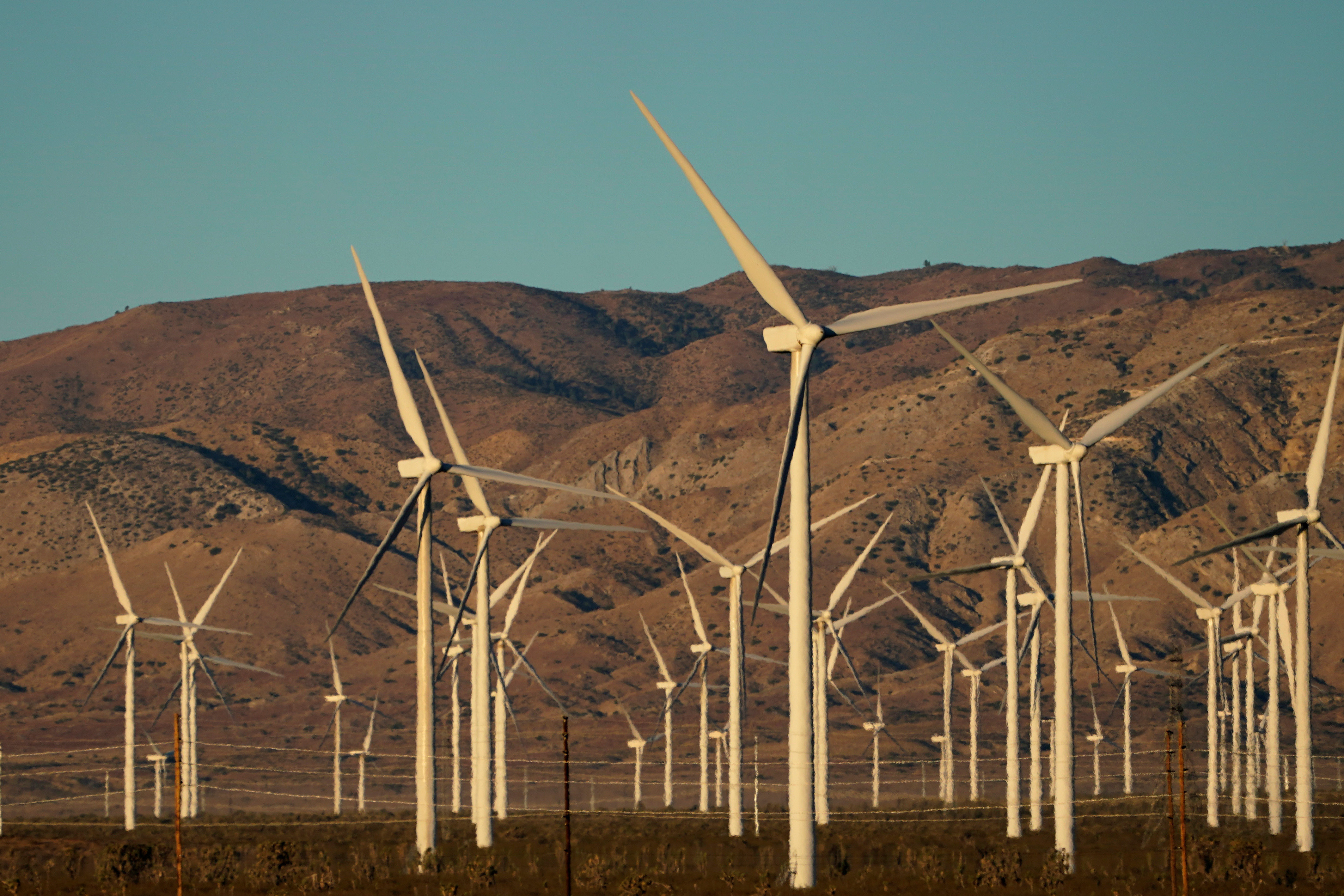 A wind farm is shown in Movave, California, U.S., November 8, 2019.  REUTERS/Mike Blake - RC2E7D9WDU8J