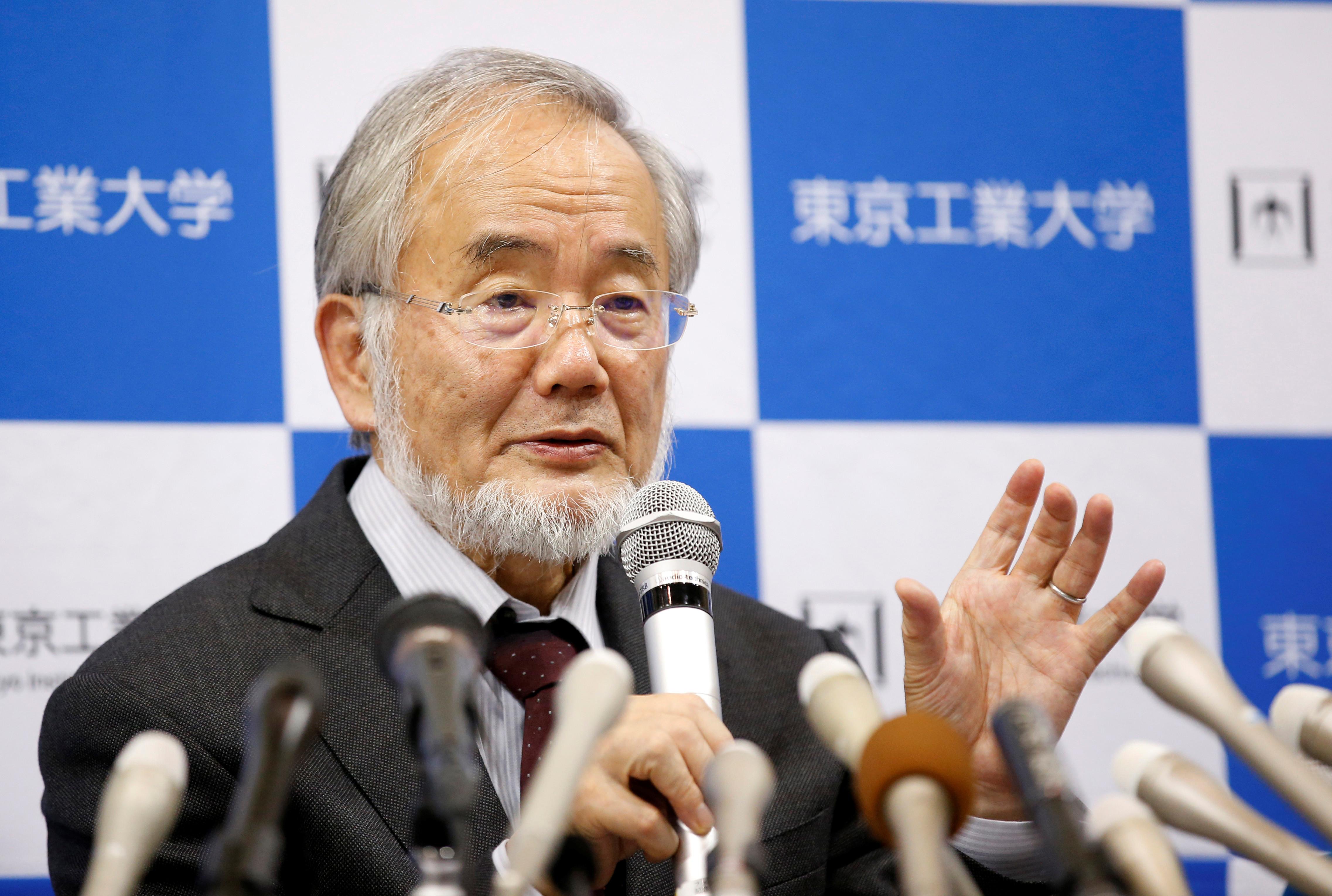 Yoshinori Ohsumi, winner of the Nobel Prize for Medicine