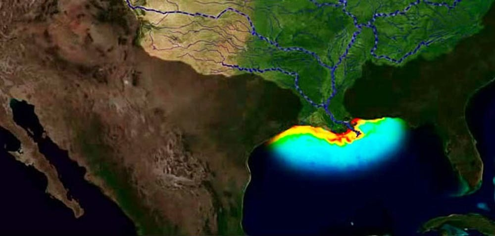 A 'dead zone' in the Gulf of Mexico, caused by fertiliser washed into the Mississippi.