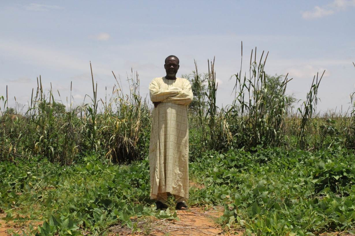 Farmer Hassane Hima, known by his peers in the village of Borgo Beri, Niger as the king of millet, poses for a picture in front of his millet filed on Sept. 13, 2019.