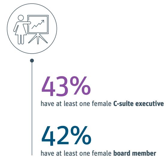 tech diversity start ups white black brown coloured ethnicity gender man woman board c suite business enterprise founder ceo