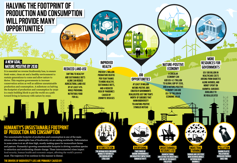 an infographic on the effects that redirecting subsidies could have on the planet