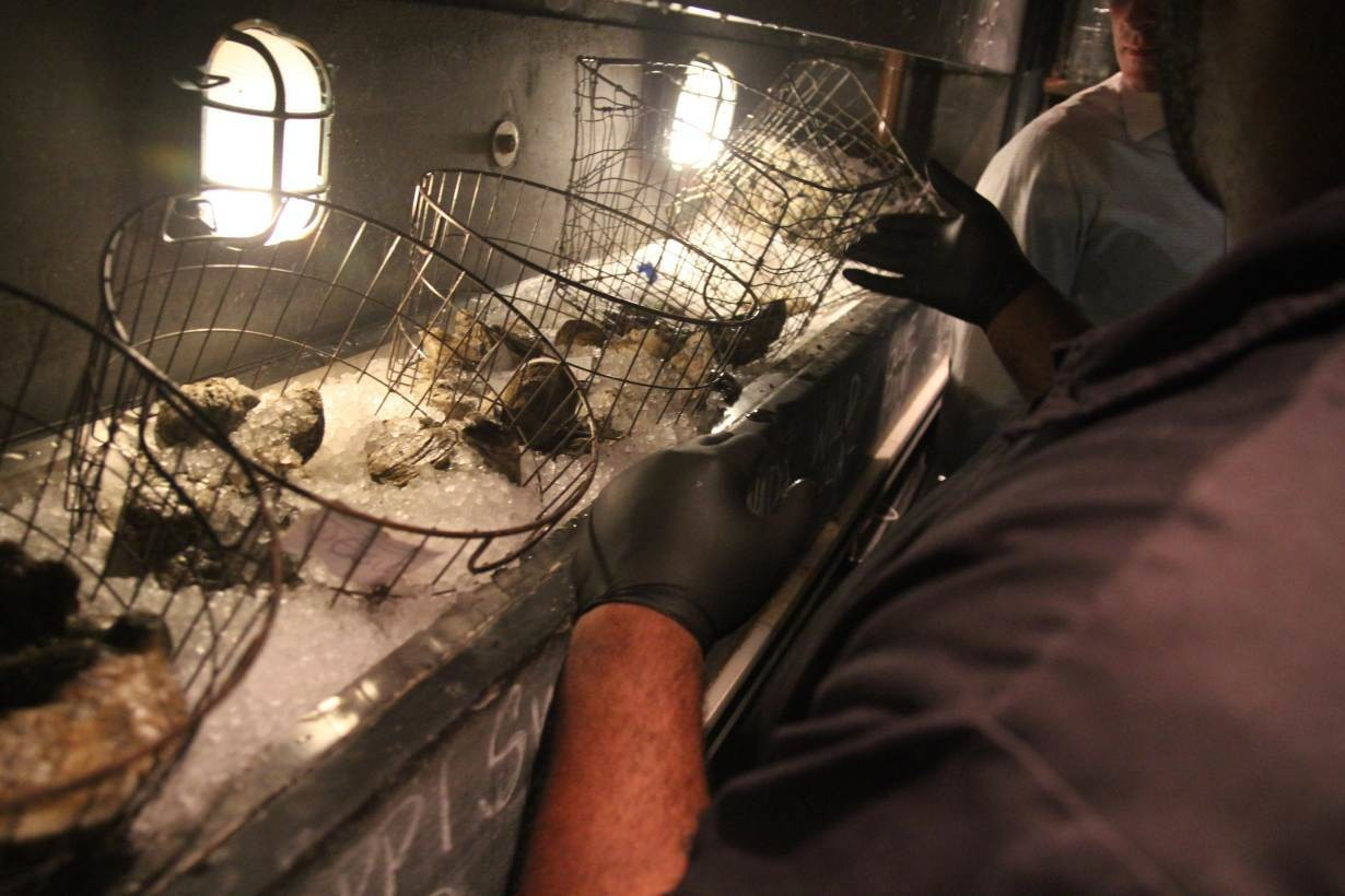 A restaurant employee chucks an oyster at Seaworthy, a seafood restaurant in New Orleans, Louisiana that recycles the mollusk's shells as part of a community project to build oyster-shell made breakwaters. November 16, 2018.