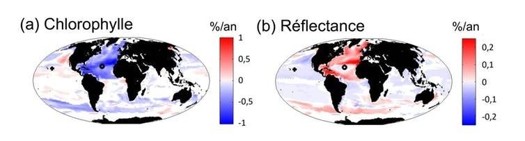 Évolutions de la concentration en chlorophylle et de la réflectance des océans simulées par le modèle. Les évolutions sont calculées en pourcentage par an d'ici 2100. Une couleur rouge traduit une forte augmentation et une couleur bleue une forte diminution, une couleur blanche indique une absence de changement. Le modèle prévoit donc de fortes modifications de la chlorophylle et de la réflectance d'ici 2100 dans l'ensemble des océans.