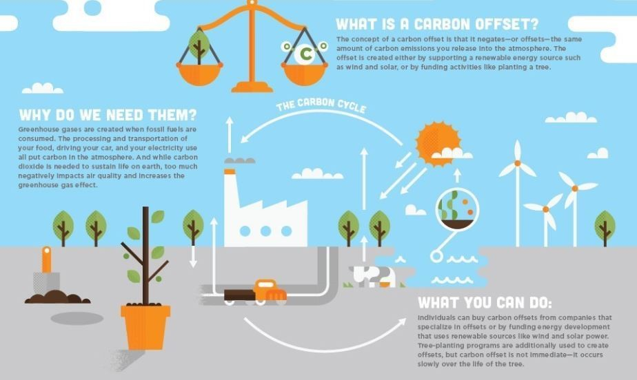 What is carbon offsetting? | World Economic Forum