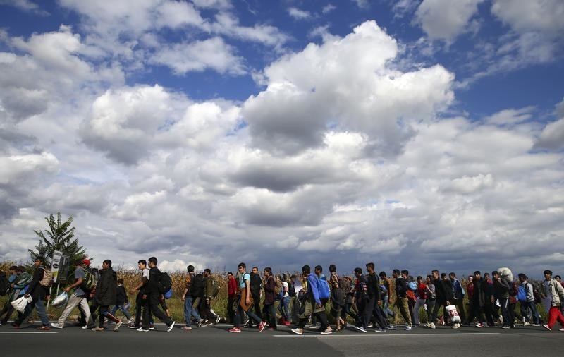 Refugees and migrants walk towards the Hungarian border