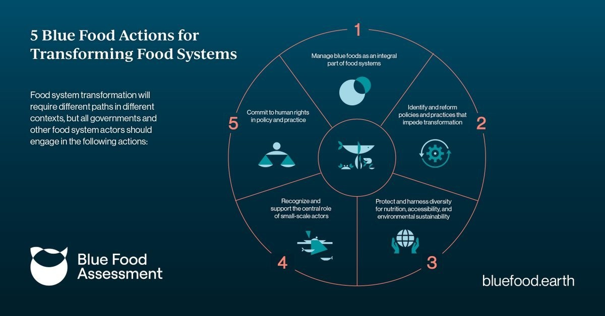 a chart showing the actions we need to take to fulfil blue food's full potential