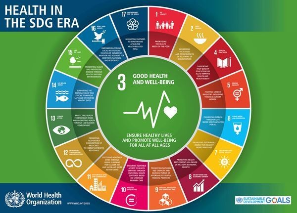Health in the SDG Era
