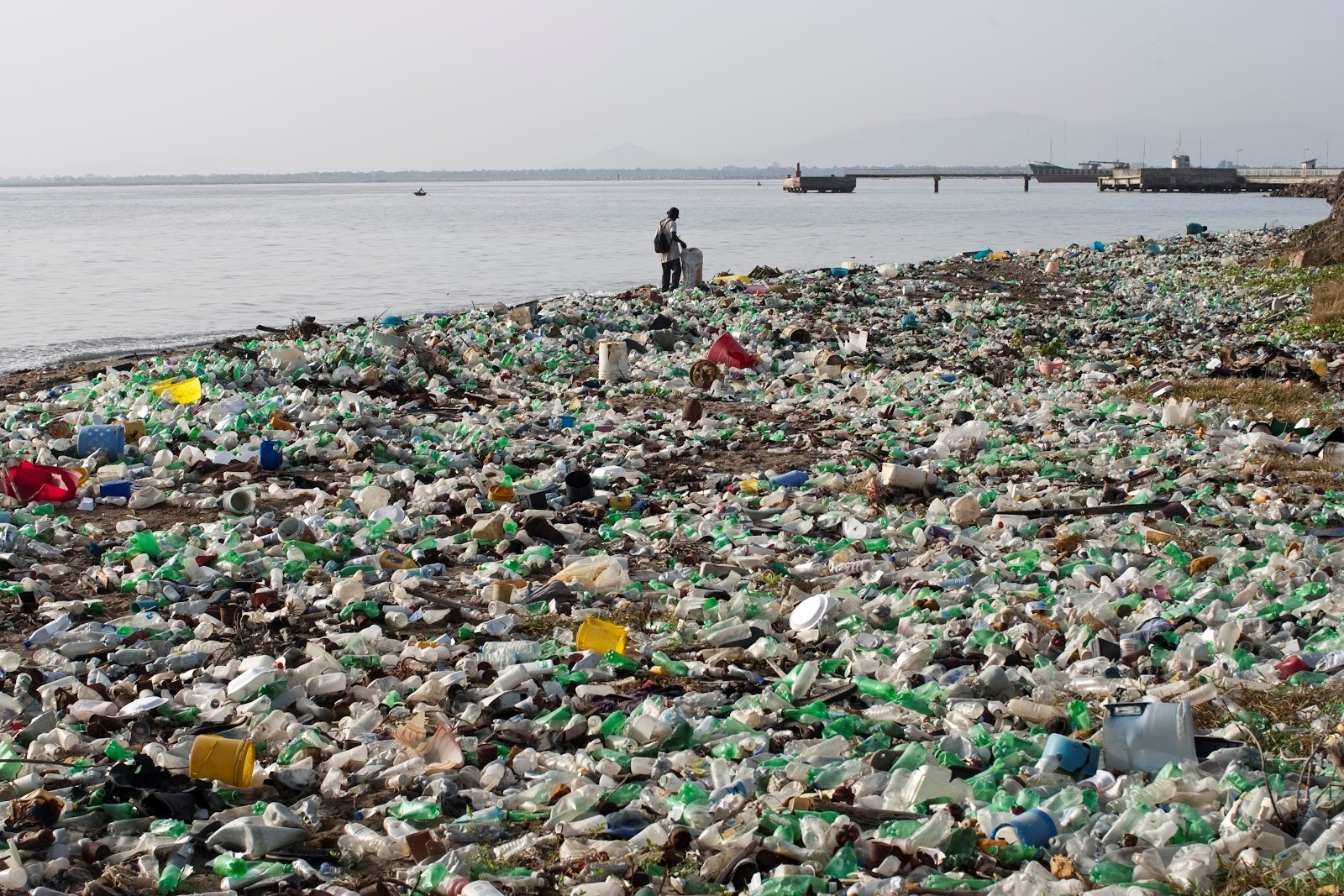 A beach covered in plastic waste.