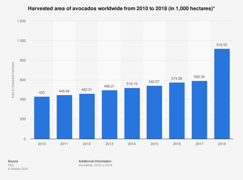 Harvested food area avocados worldwide sustainability sustainable