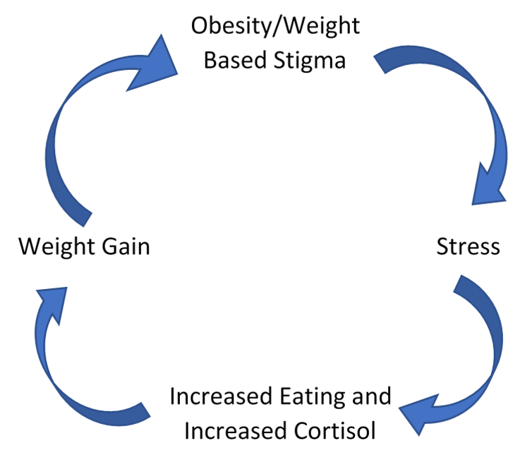 Cyclic Obesity Weight Based Stigma Model.