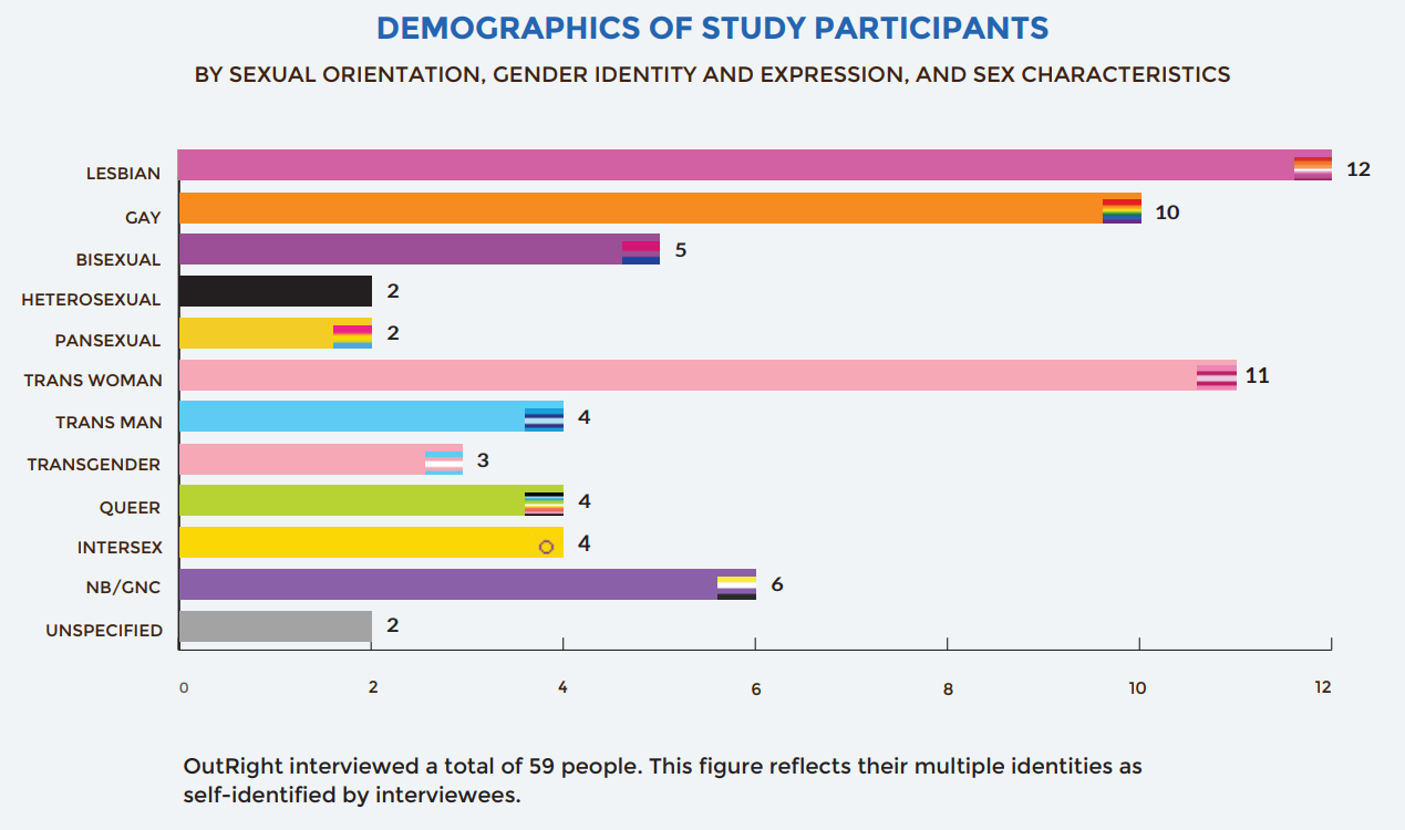 Participants in the Vulnerability Amplified report