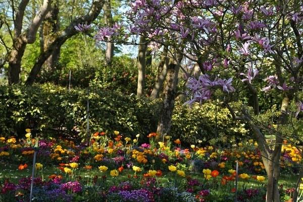 Dans les parcs, les promeneurs décrivent une expérience sensorielle très distincte de celle vécue en ville (Jardin des Plantes).