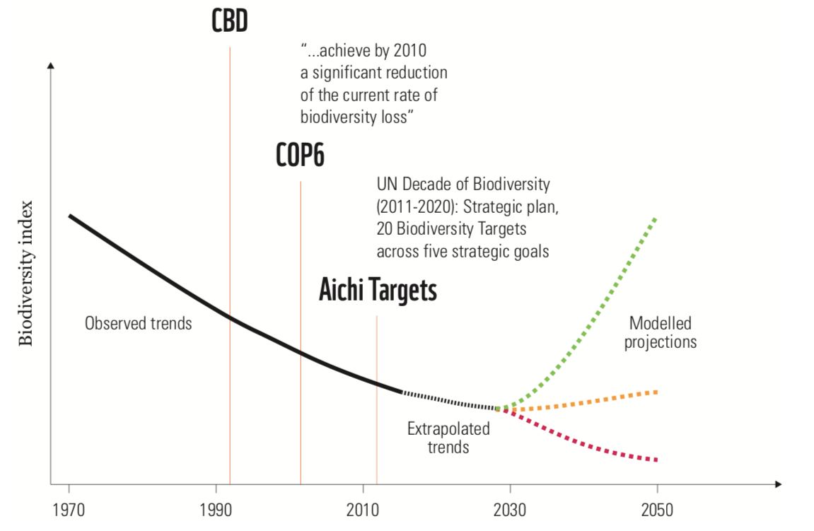 Biodiversity continues to fall despite repeated policy commitments.