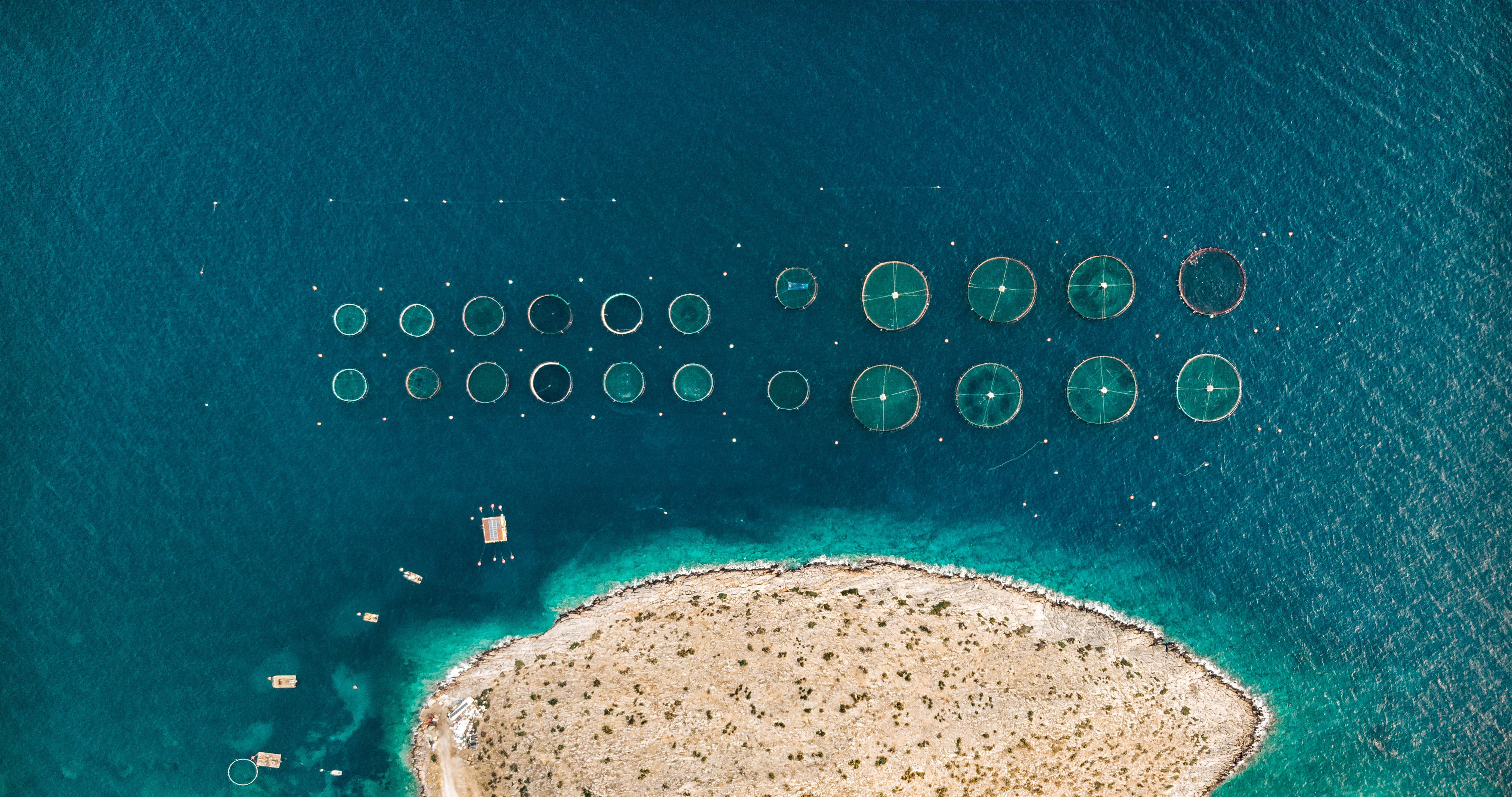 Done right, aquaculture can provide nutritional security to hundreds of millions