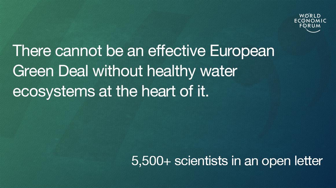 European Green Deal water ecosystems
