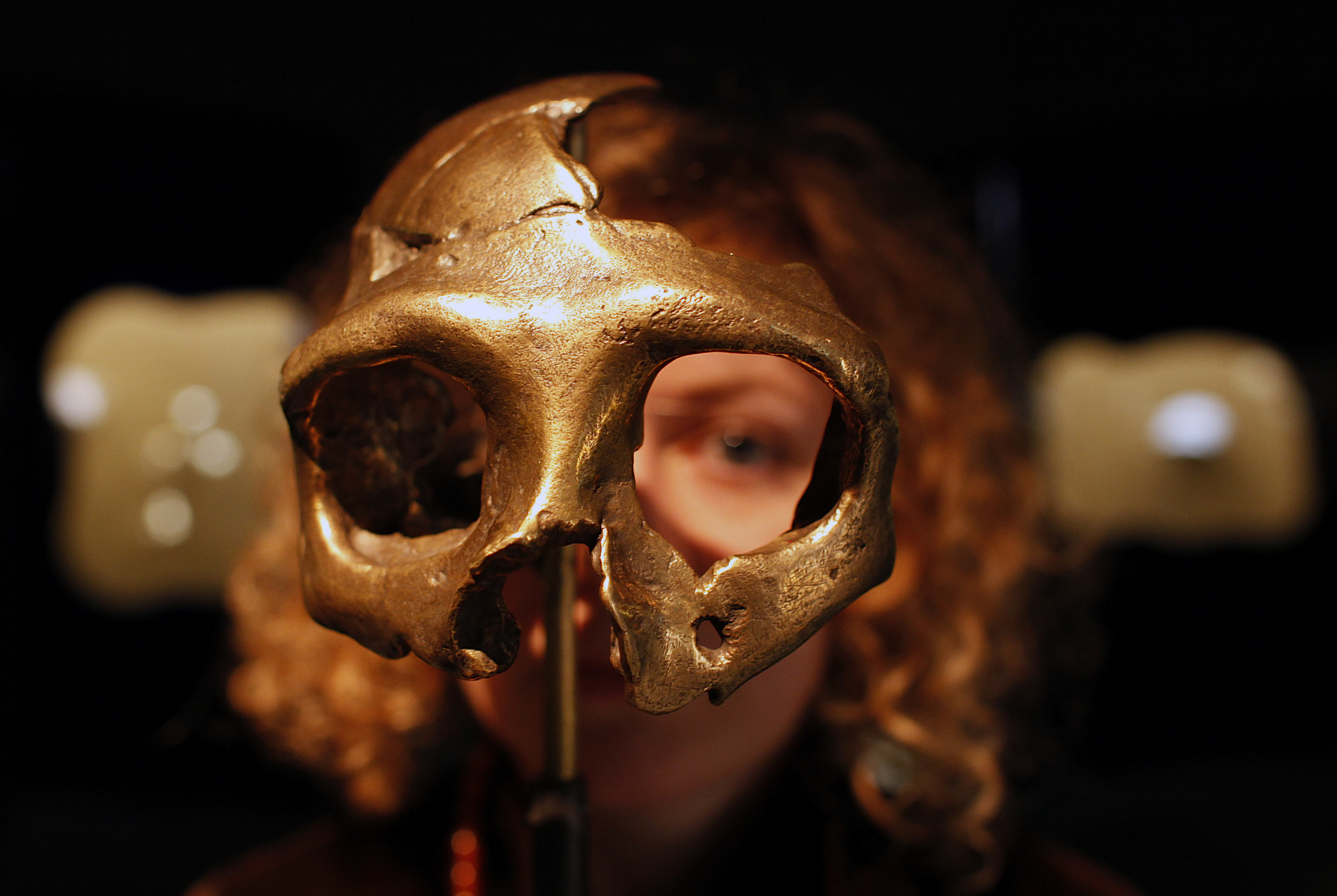 A girl looks through the replica of a neanderthal skull displayed in the new Neanderthal Museum in the northern town of Krapina February 25, 2010. The high-tech, multimedia museum, with exhibitions depicting the evolution from 'Big Bang' to present day, opens on February 27. REUTERS/Nikola Solic (CROATIA - Tags: SOCIETY IMAGES OF THE DAY) - GM1E62Q00JZ01