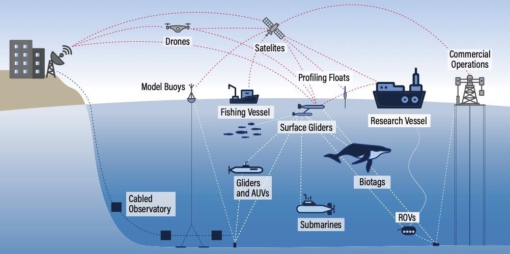 An Ocean Internet of Things